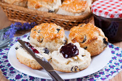 Scone met jam en room Stock Foto