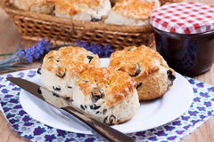 Scone on a plate Stock Images
