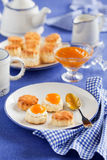 scones Royaltyfria Bilder