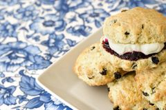 Scones. Freshly baked scones or tea biscuits with jam and cream Stock Image