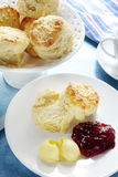Scones Royalty Free Stock Images