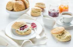 Scones with cream and fruit jam and cup of coffee Royalty Free Stock Photo
