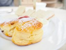 Scones with english tea Royalty Free Stock Image