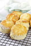 Scones Fresh from the Oven Stock Images