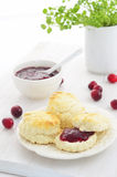 Scones with homemade cranberry jam Stock Images