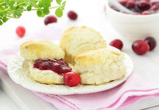 Scones with homemade cranberry jam Royalty Free Stock Image