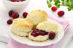 Scones with homemade cranberry jam Stock Image