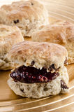 Scones with jam on a plate Royalty Free Stock Image