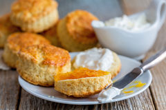 Scones with orange jam and whipped cream. Royalty Free Stock Images