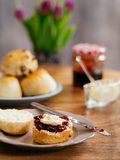 Scones prepared with clotted cream and jam Royalty Free Stock Image
