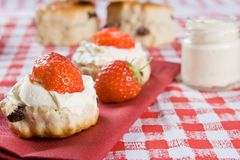 Scones, strawberries and clotted cream royalty free stock photo