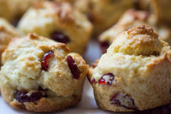 Scones. Two mini cranberry scones on plate Stock Photography