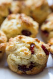 Scones. Two mini cranberry scones on plate Royalty Free Stock Image