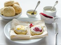 Scones with whipped cream, lemon curd and cranberry jam Stock Image