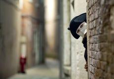 Sconosciuto nella maschera veneziana Immagine Stock Libera da Diritti
