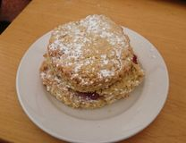 Scontastic. Delicious raspberry and vanilla scone at shipley country park Royalty Free Stock Photography