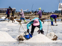 Scoop and carry salt on a shoulder. In salt pan activity Stock Photos