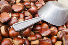 Scoop and chestnuts Stock Images