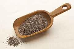 Scoop of chia seeds Stock Photos