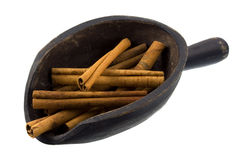 Scoop of cinnamon sticks stock photos