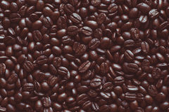 Scoop of coffee beans Stock Photography