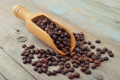Scoop with coffee beans Stock Images