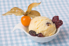 Scoop of cranberry ice cream with physalis Stock Photo