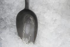Scoop de glace dans le seau à glace Images libres de droits