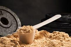 Scoop de protéine de lactalbumine sur le fond noir Flawour de chocolat Image stock