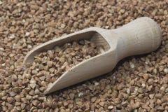 Scoop en bois avec du sarrasin Image libre de droits