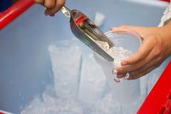 Scoop femelle de glace en métal d'utilisation et tasse en plastique dans le seau à glace photo stock