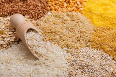 Scoop filled with rice on the background of heaps of cereals royalty free stock image