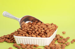 Scoop of fresh almonds Stock Image
