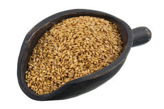 Scoop of golden flax seeds Stock Images