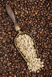 Scoop with green coffee beans Stock Photos