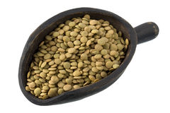 Scoop of green  lentils Royalty Free Stock Photography
