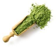 Green matcha tea powder Royalty Free Stock Image
