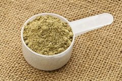 Scoop of hemp protein powder Stock Photography