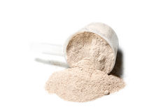 Scoop of Isolate protein powder chocolate deluxe flavour  poured Stock Photography