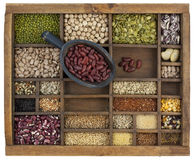 Scoop of kidney beans, variety of grain and seeds. Rustic scoop of red kidney beans and a variety of lentils, grain, seeds in old wooden typesetter case Royalty Free Stock Photo