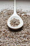 Scoop with linseed Royalty Free Stock Photos