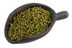 Scoop of mung beans Stock Photos