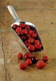 scoop ny metall för cranberries ut spill arkivfoton