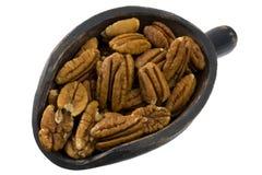 Scoop of pecan nuts stock image