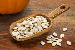 Scoop of pumpkin seeds Royalty Free Stock Photography