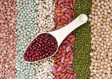 Scoop of red bean Royalty Free Stock Photos