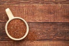 Scoop of red quinoa grain Stock Photos