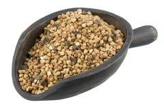 Scoop of roasted buckwheat (kasha) Royalty Free Stock Images