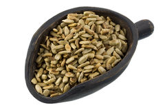 Scoop of roasted sunflower seeds Stock Photos