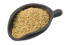 Scoop of sesame seeds Stock Photo